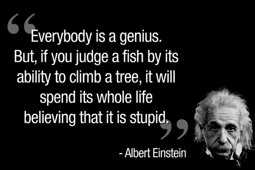 8reflection essayquoted by albert einstein education